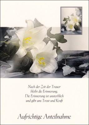 Gedenkkarte White Roses