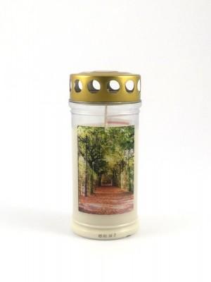 JEKA Austria Grabkerze M5-Baumallee, mit Witterungsschutz, aus Pflanzenöl